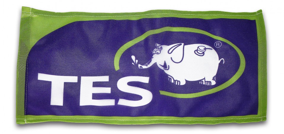 Флаг компании ТЭС