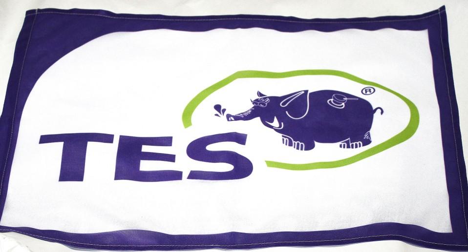 Флаг компании ТЭС, с белым фоном